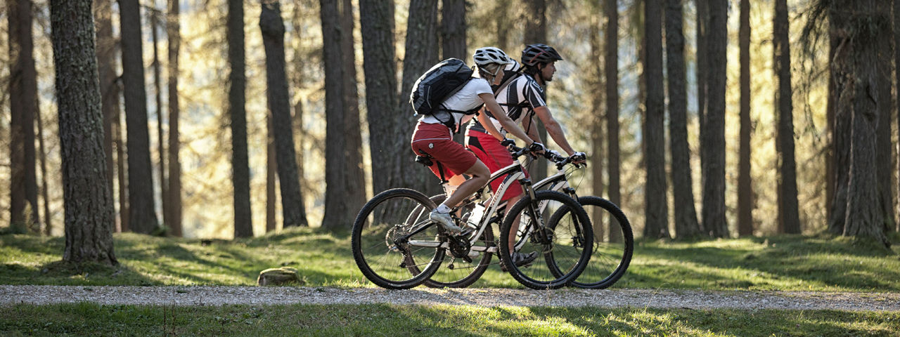 Bikeschaukel Etappe 04: Blindseetrail