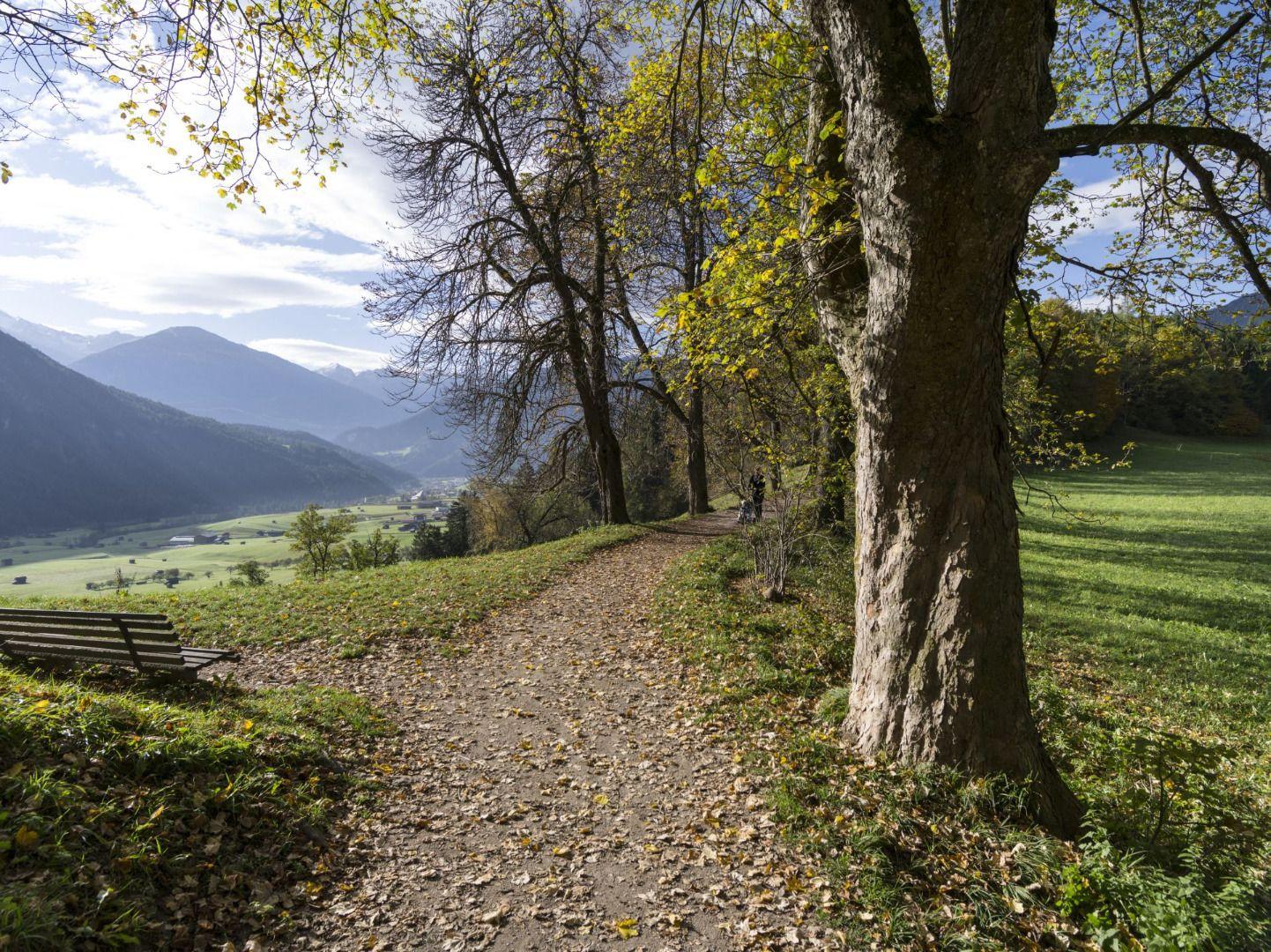 starkenberger_panoramaweg_etappe_4 (1).jpg