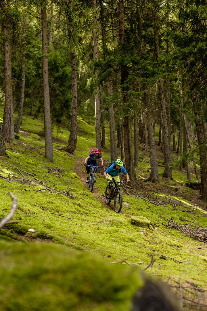 MTB-Trail-Trailzauber-Latsch-Martell-ks