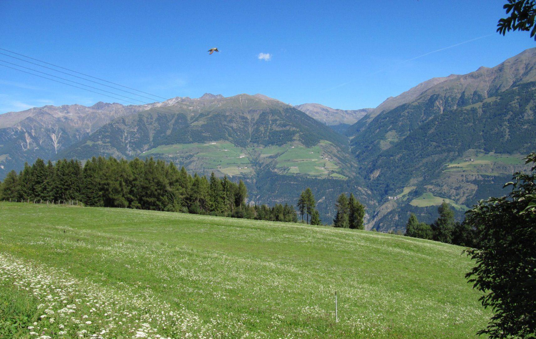 mtb-holyhansen-trail-panorama-schlanders-laas-tvsl.jpg