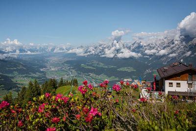 Hecherhaus Alpine Lodge 1