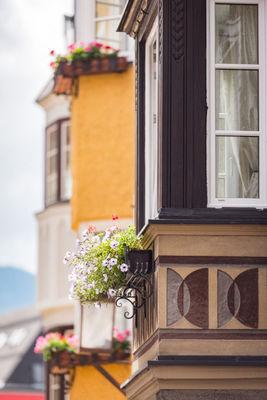 Blumen in der Altstadt-801x1200.jpg