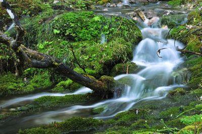 Naturpark Karwendel 6