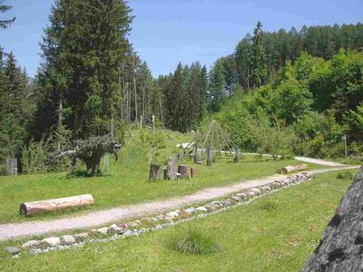 Schwazer Silberwald 1